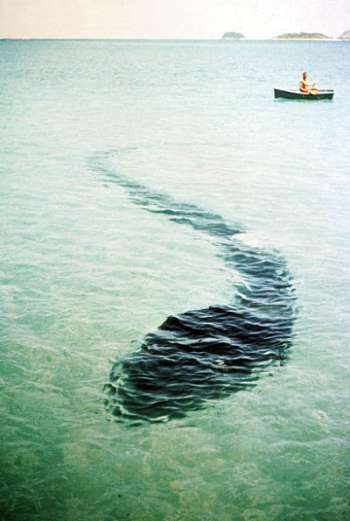 http://www.mundoparanormal.com/imagenes/criptozoologia/015.jpg