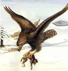 ¿Aguilas gigantes?